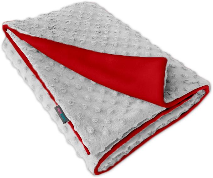 Dětská fleece deka Minky sv.šedá/červená oboustranná